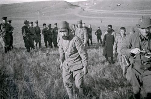 揭秘二战中一个朝鲜人打遍了全世界,从东北一直打到诺曼底
