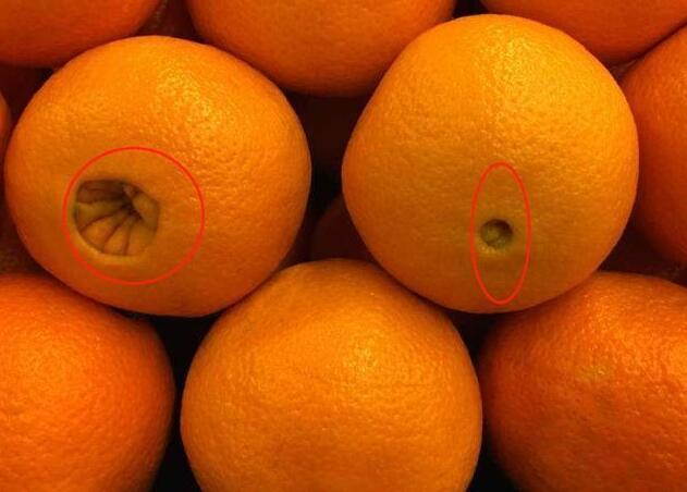 """国庆买橘子,讲究""""3看1摸"""",买的又甜又多汁,看完分享给家人"""