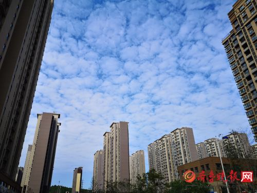 济南解除大风蓝色预警6日有小雨最低温仅5℃