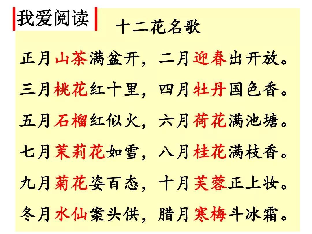 二年级语文上册十二月花名歌讲解