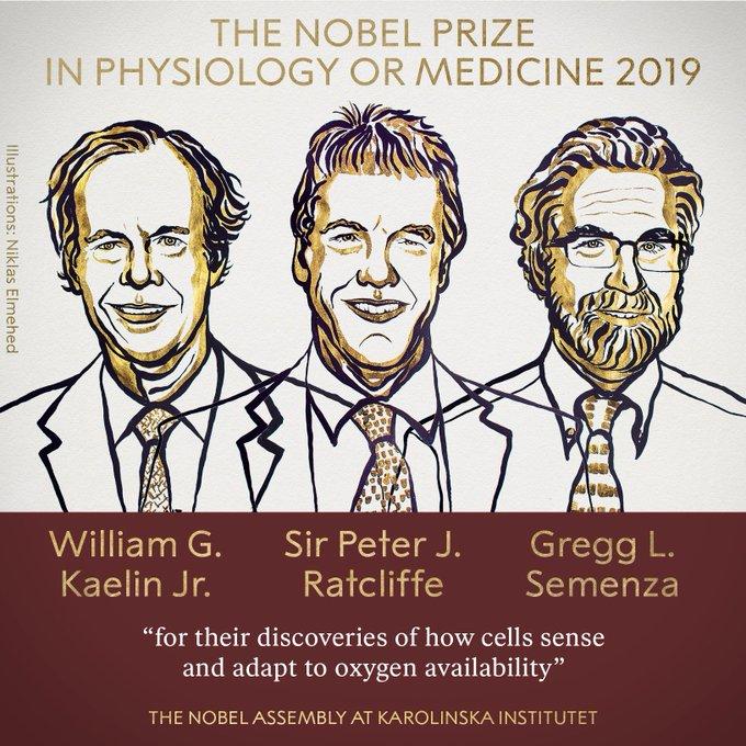 2019诺贝尔生理学或医学奖揭晓 3位医学家获奖