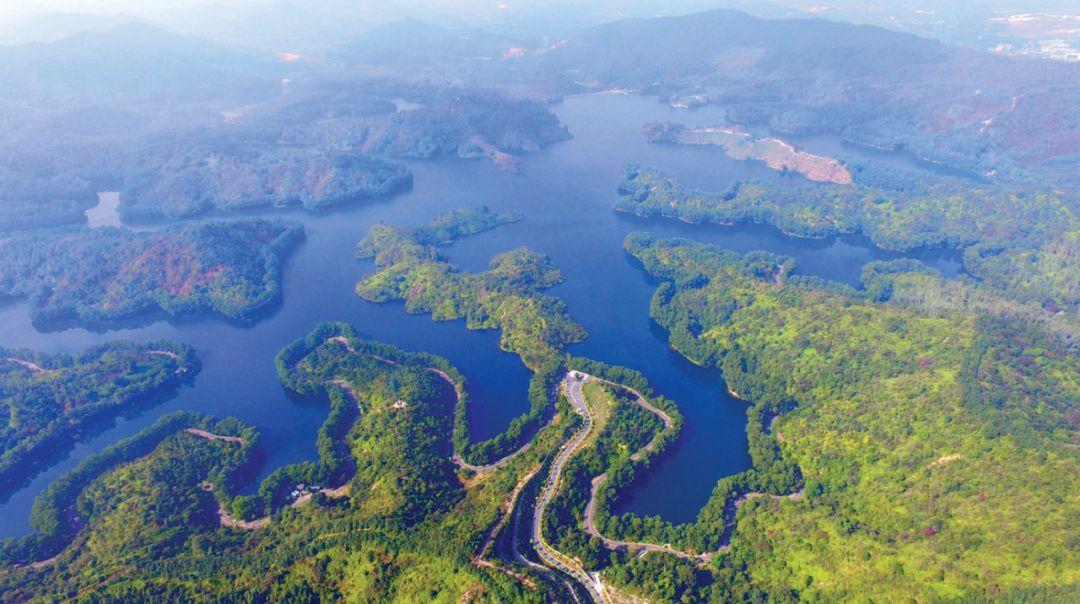 实名打Call!外国友人写文盛赞红花湖,展示了惠州最珍贵礼物