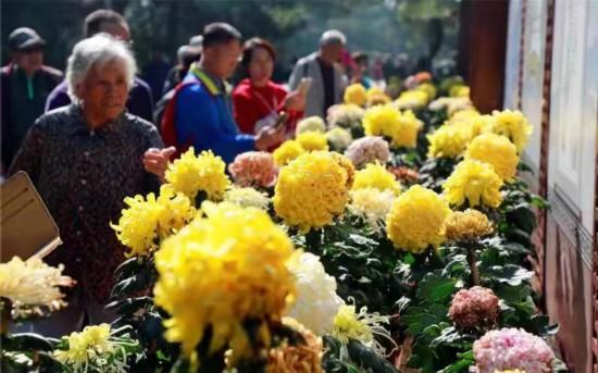 国庆假期近320万人游北京市属公园?部分活动节后将持续