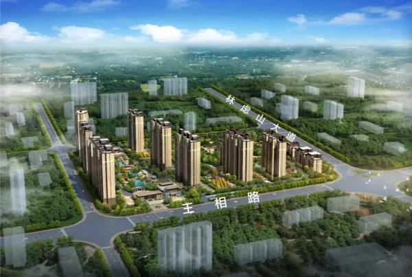 林州市新区规划图