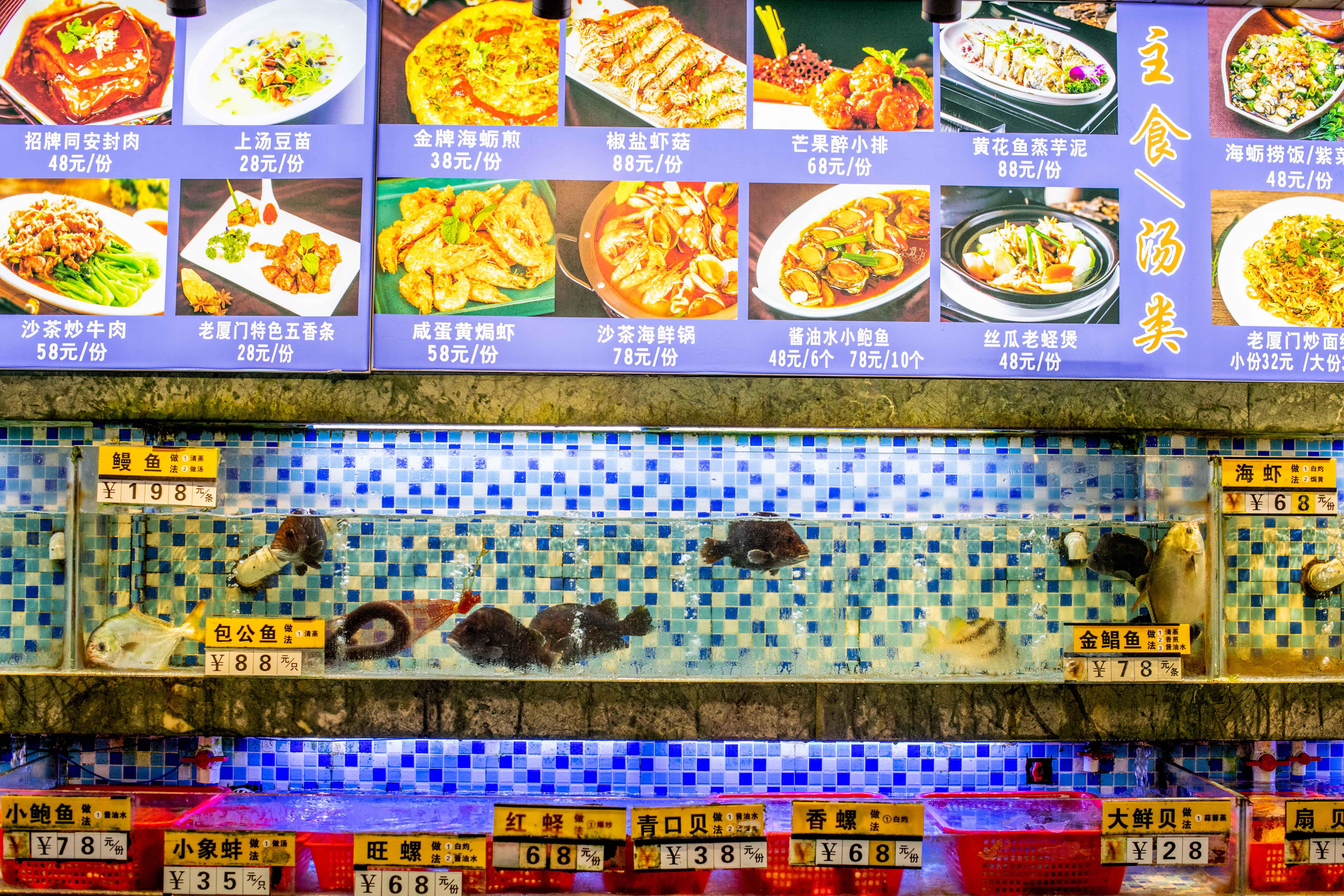 原创             去厦门旅行该吃什么?这里的闽南菜最正宗,去厦门必去打卡!