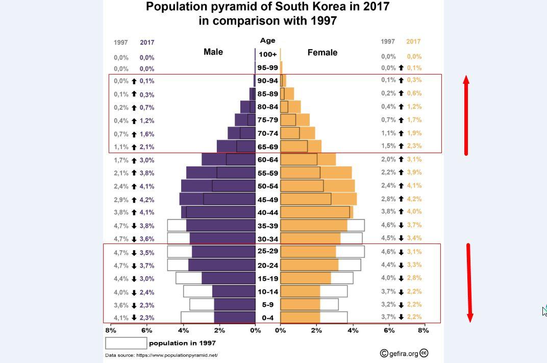 人口结构是国家