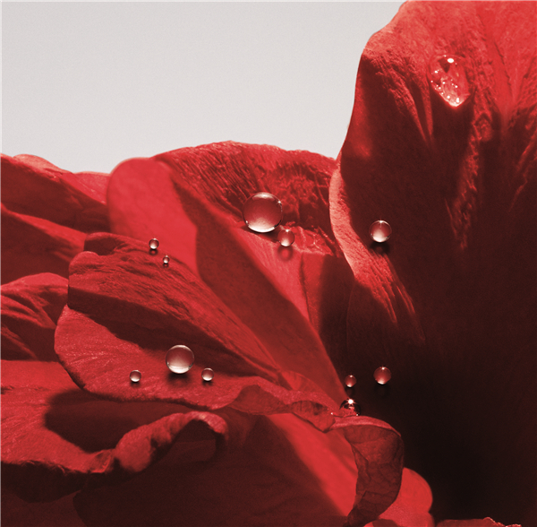 DIOR迪奥红色1号系列|拒绝城市污染,我自有防御之道!