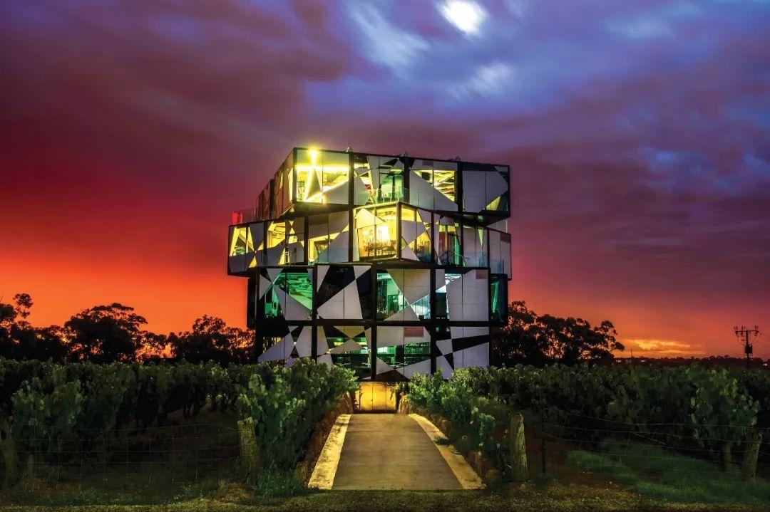 河马大课堂,用紫葡萄酝酿一场南澳州风暴
