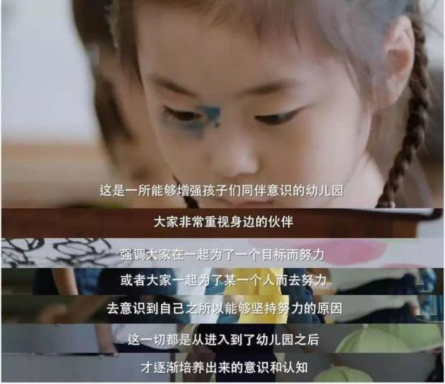 《他乡的童年》:日本的网红幼儿园,到底藏着什么教育秘笈?