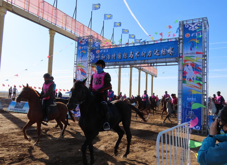 2019中国•呼和浩特国际马术耐力达标赛开赛_比赛