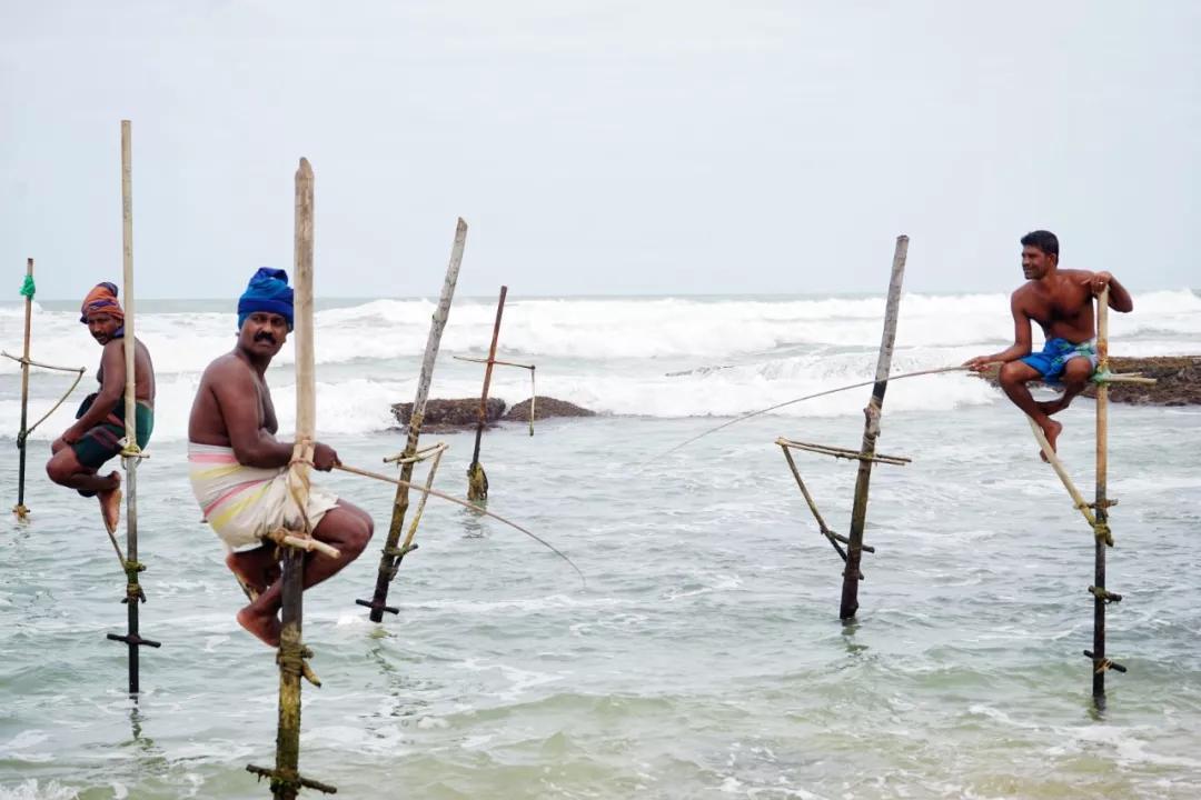 原创             神秘低调的斯里兰卡,凭什么登上全球最佳旅行国家榜首!