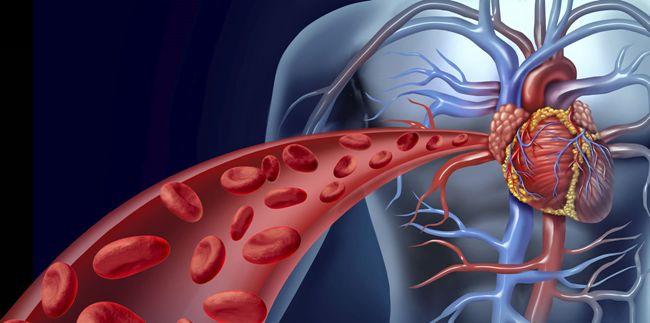 细胞如何感知氧气获2019年诺贝尔生理学奖:有氧运动提升耐力原来如此神奇!