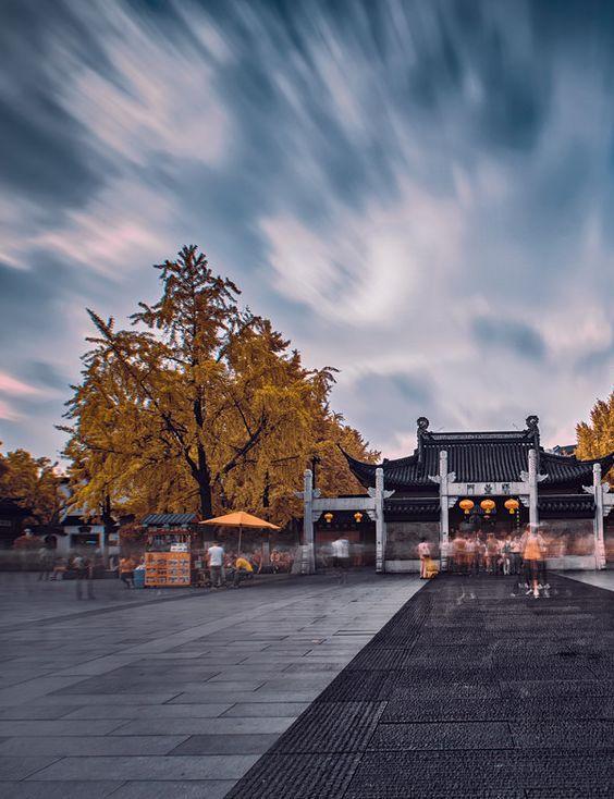 南京!秋天的南京太美了!