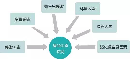 预防原理的什么原则_传染病如何预防三原则