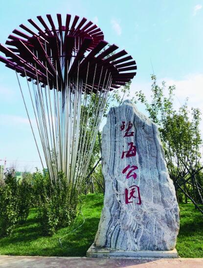 哈尔滨新区碧海公园免费开放啦