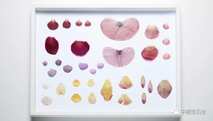 """有生命的珠宝,Boucheron打造不凋谢的""""永生花"""""""