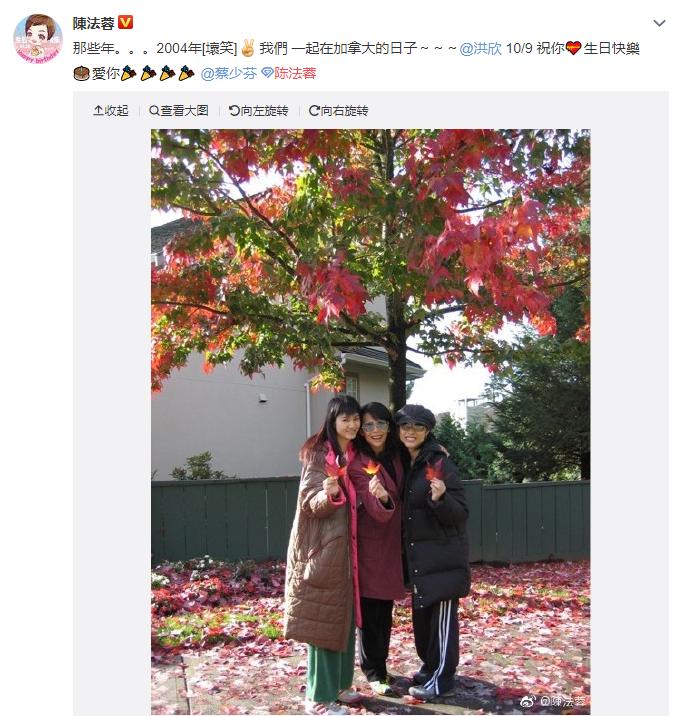 """陈法蓉晒照为洪欣庆生却秒删,照片中的洪欣""""又胖又土"""""""