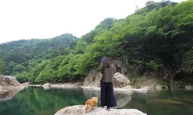 带着养了8年的柯基,她和狗狗一起做了世界上最浪漫的挑战……