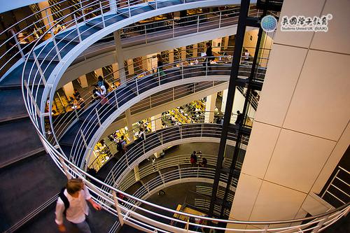 伦敦政治经济学院录取率高的本科专业推荐