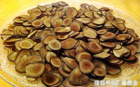 http://www.1560327.live/kejizhishi/44502.html