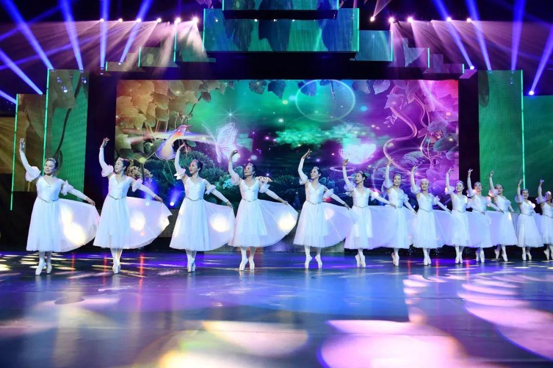 附报名攻略 十月 敬老月 启动,2020年安徽省老年春节联欢晚会海选即将开始
