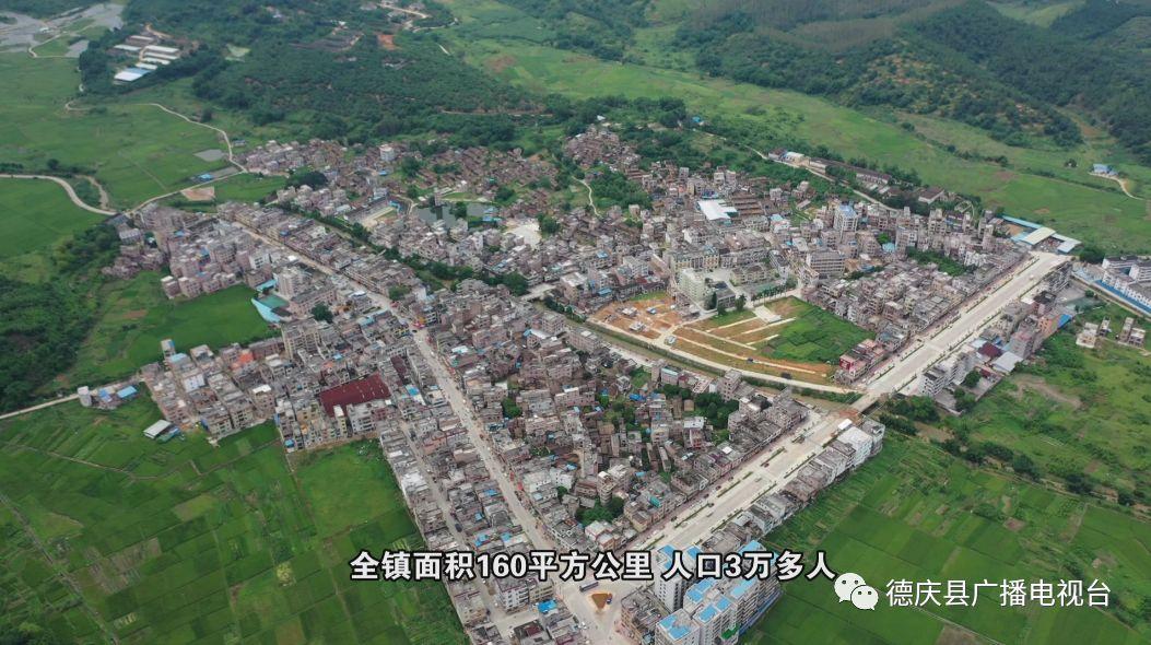 德庆人口及面积_德庆龙母庙图片