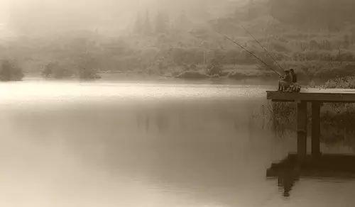 【钓鱼技巧】钓鱼人该懂的什么才是搓拉结合-第1张图片