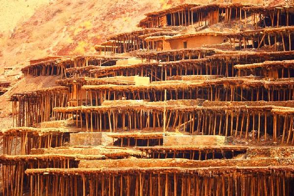 中国那些惊艳世界的田地,唯有西藏这个最为特别