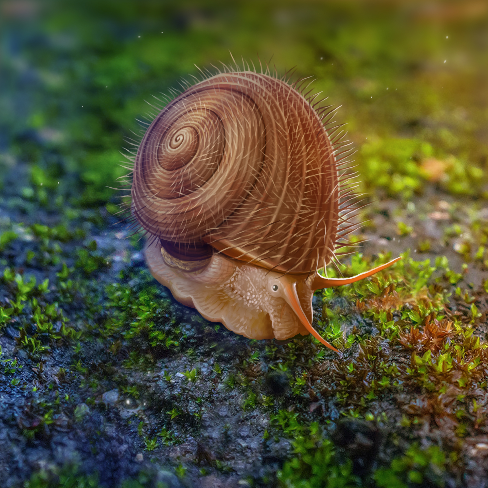 毛烘烘的蜗牛长啥样?一亿年前带角质毛的蜗牛琥珀现身