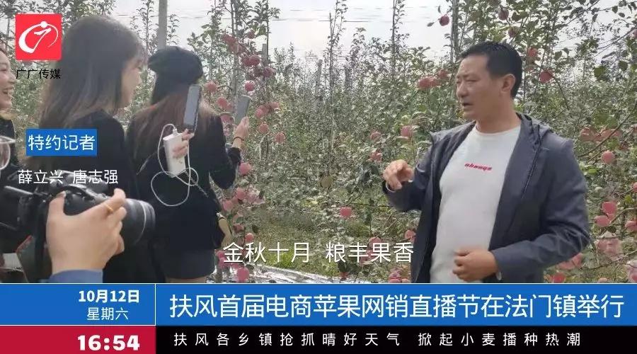 扶风县首届电商苹果网销直播节在法门镇云岭村举行