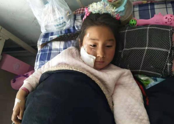 黑龙江拜泉县爱心涌动 帮助被狗咬伤的女孩儿
