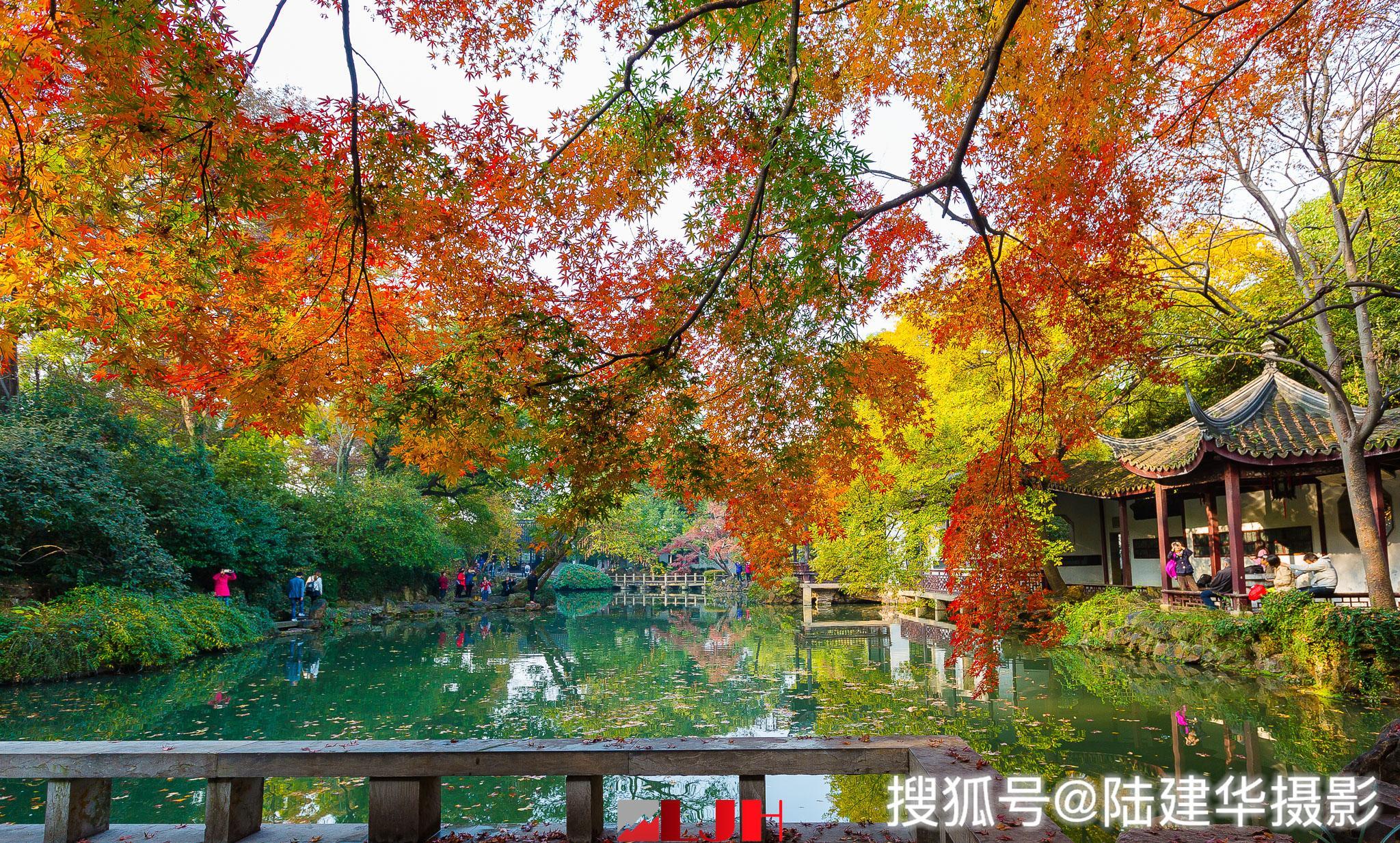 惠山古镇寄畅园,一年一度的秋色最醉人