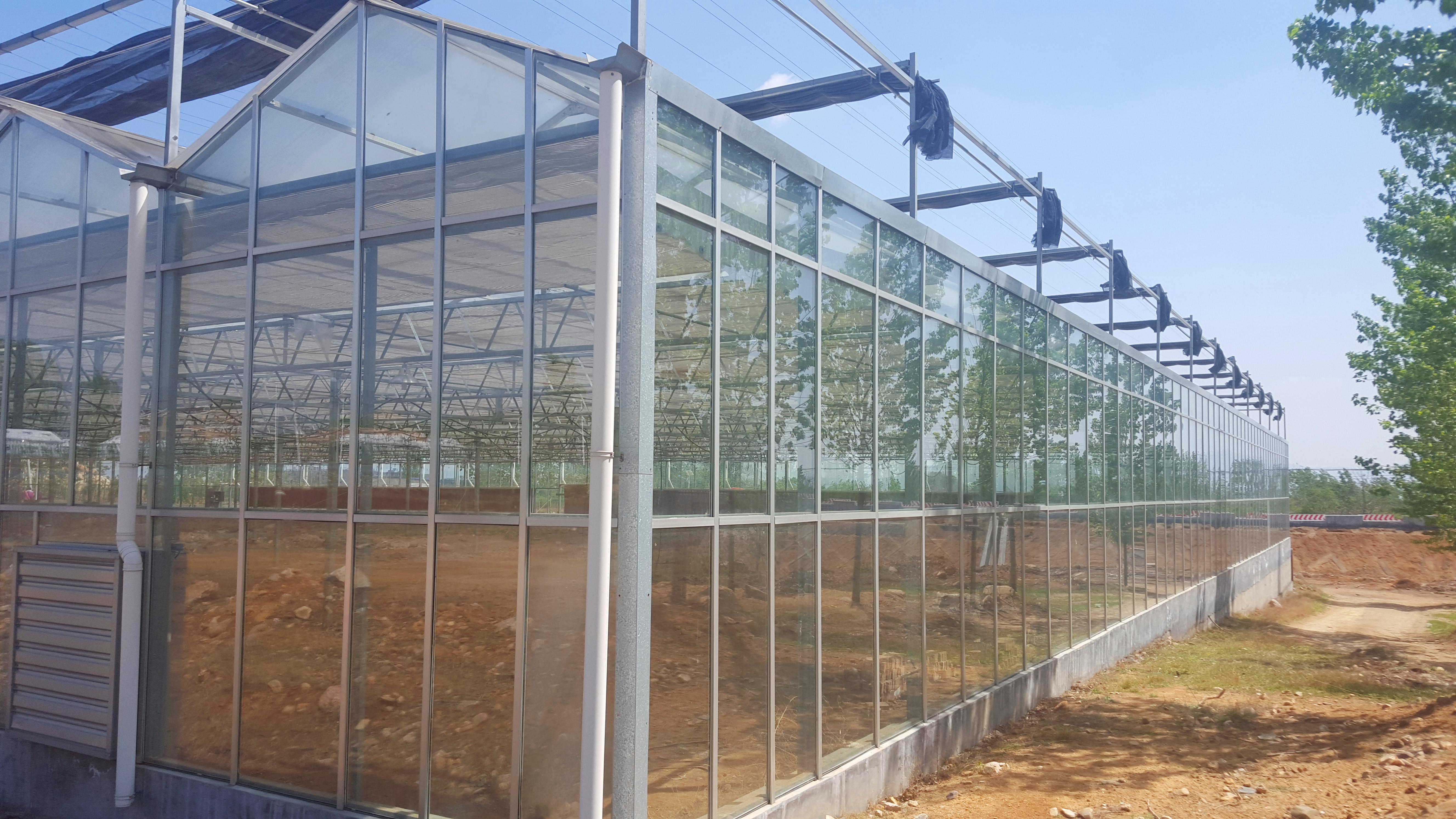 「歌珊温室」湖北宜昌二期连栋PC阳光板(玻璃)温室大棚工程案例