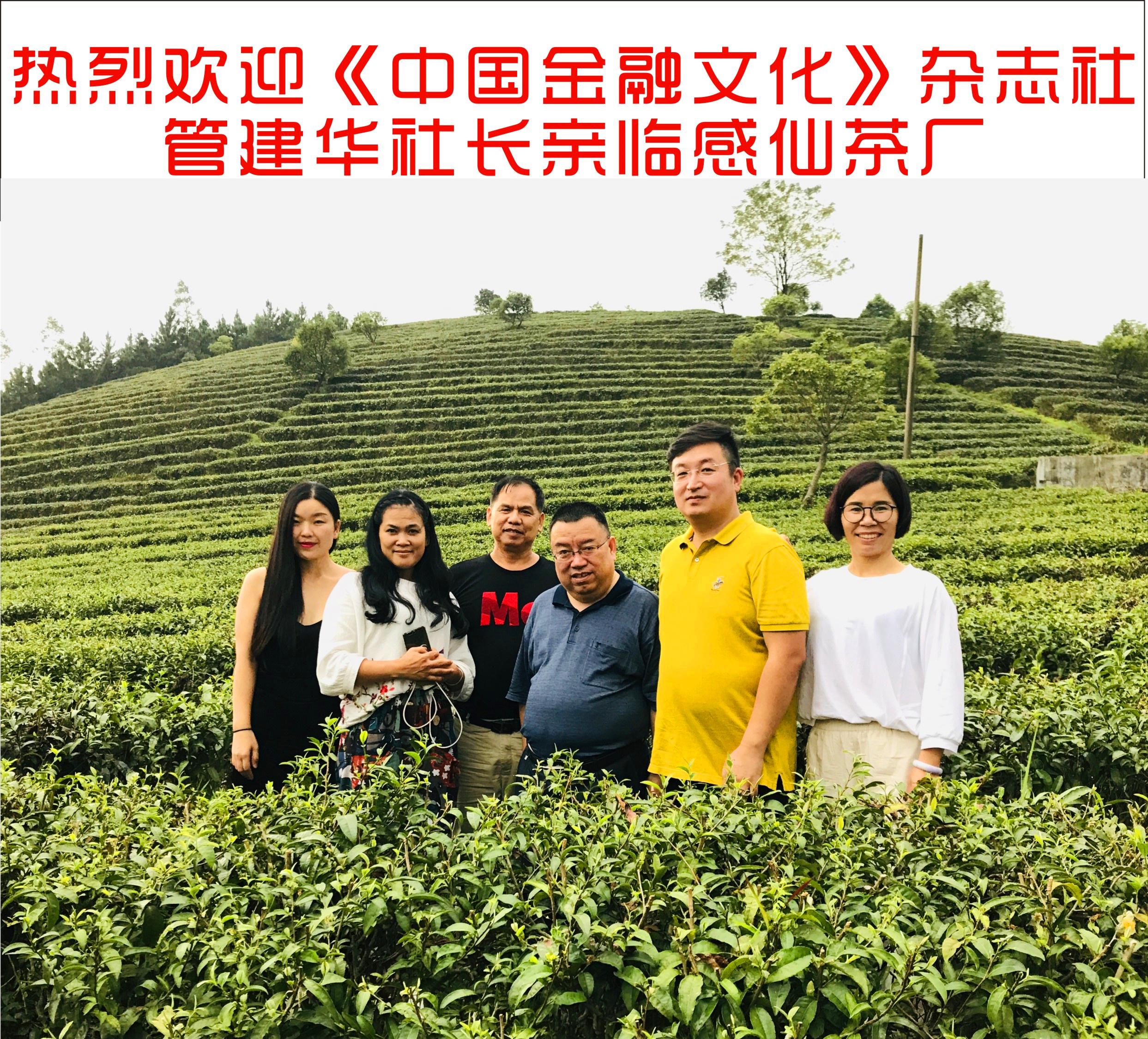 3b9c937622d146919d28c3cf8e5c49fe - 志社社长一行亲临感仙茶厂首页通知中国金融文化杂