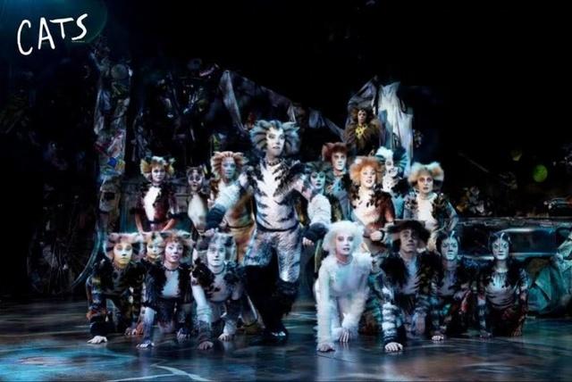 杰里科猫咪们回来啦!音乐剧《猫》连开十三场,羊城观众可圆梦了