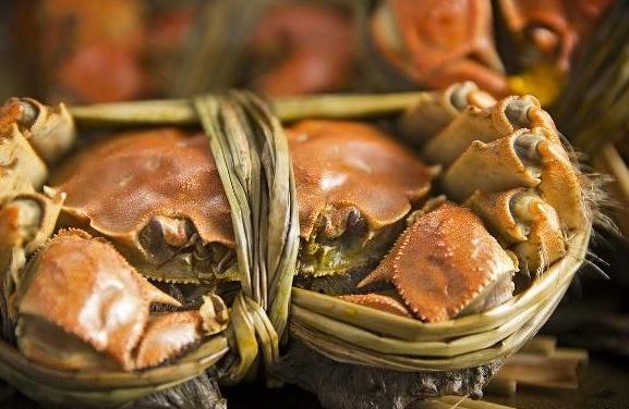 继小龙虾卖不动后,今年大闸蟹价格也大跳水,啥原因造成的