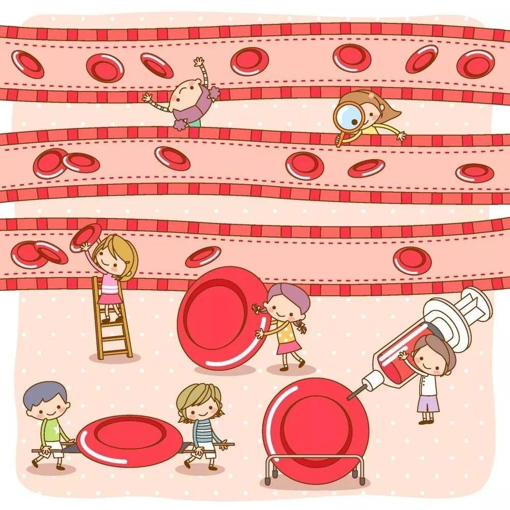 红细胞计数偏高的原因 红细胞计数正常值是多少?