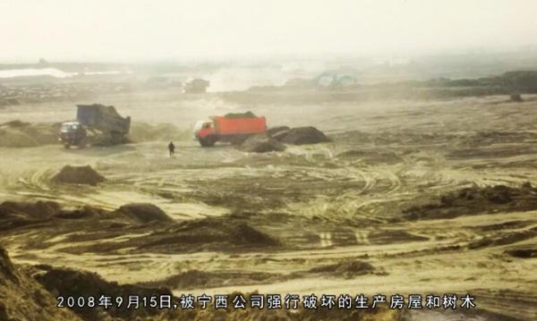 宁夏杨德敏:八年呕心沥血治理千亩荒滩地 树茂草绿时却付诸东流