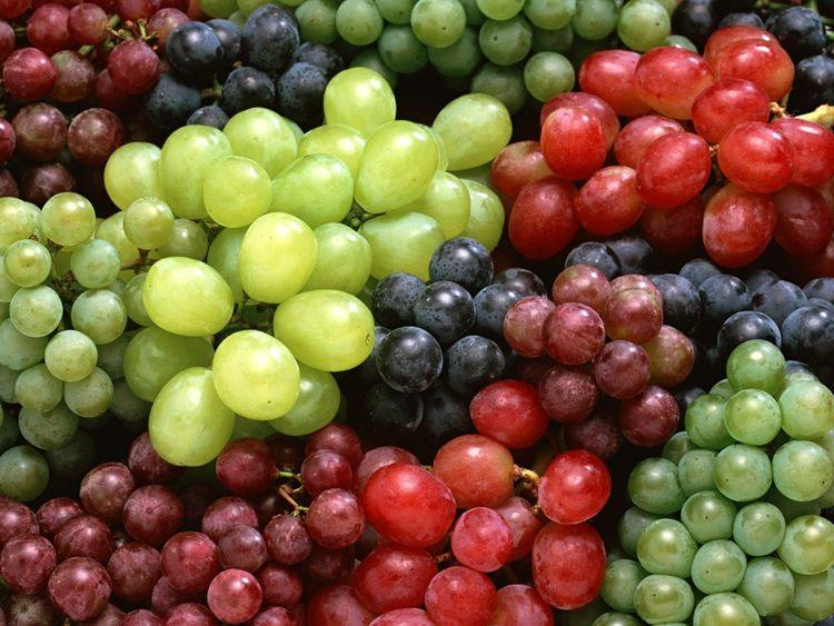 <b>常吃葡萄有5大好处,特别是对女性,美容养颜,补气血、还抗衰老</b>
