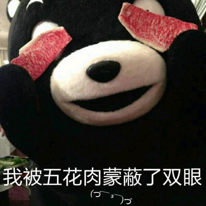熊本熊表情包:我被五花肉蒙蔽了双眼 _大爷