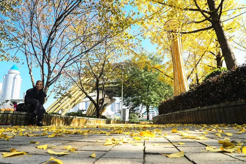 三十地三十景,邂逅秋日贵州醉美风情