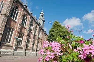 为什么放弃英美加澳 选择去荷兰留学?