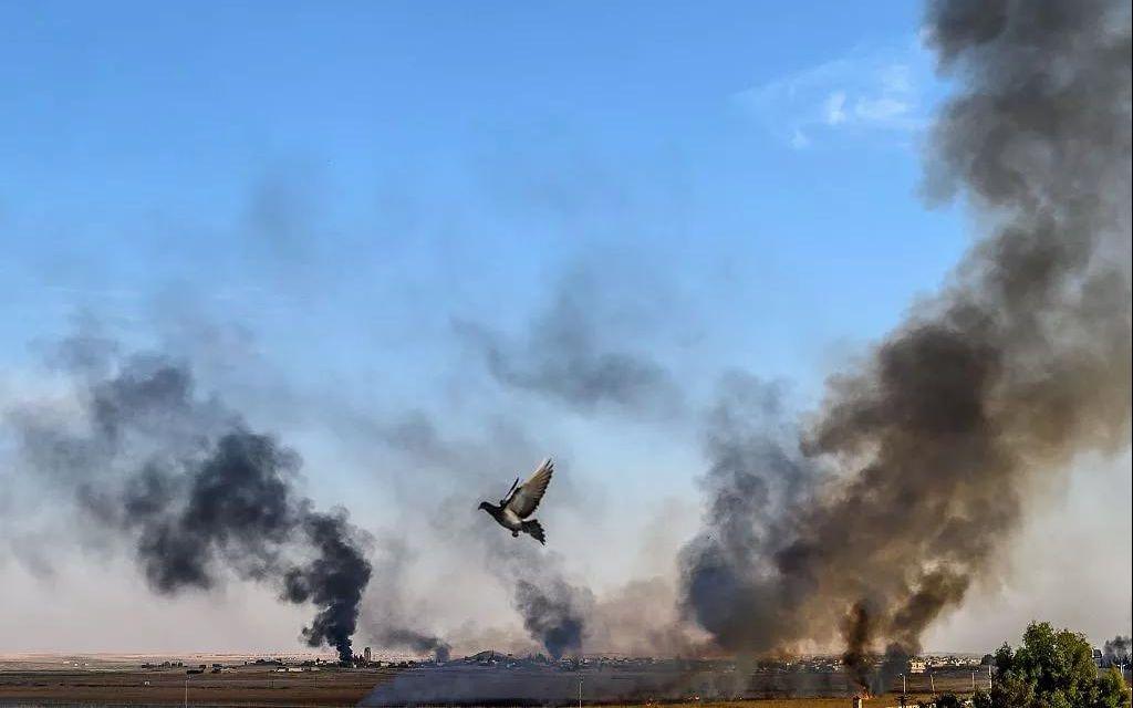 失去美国保护,叙利亚库尔德武装转投俄罗斯怀抱?