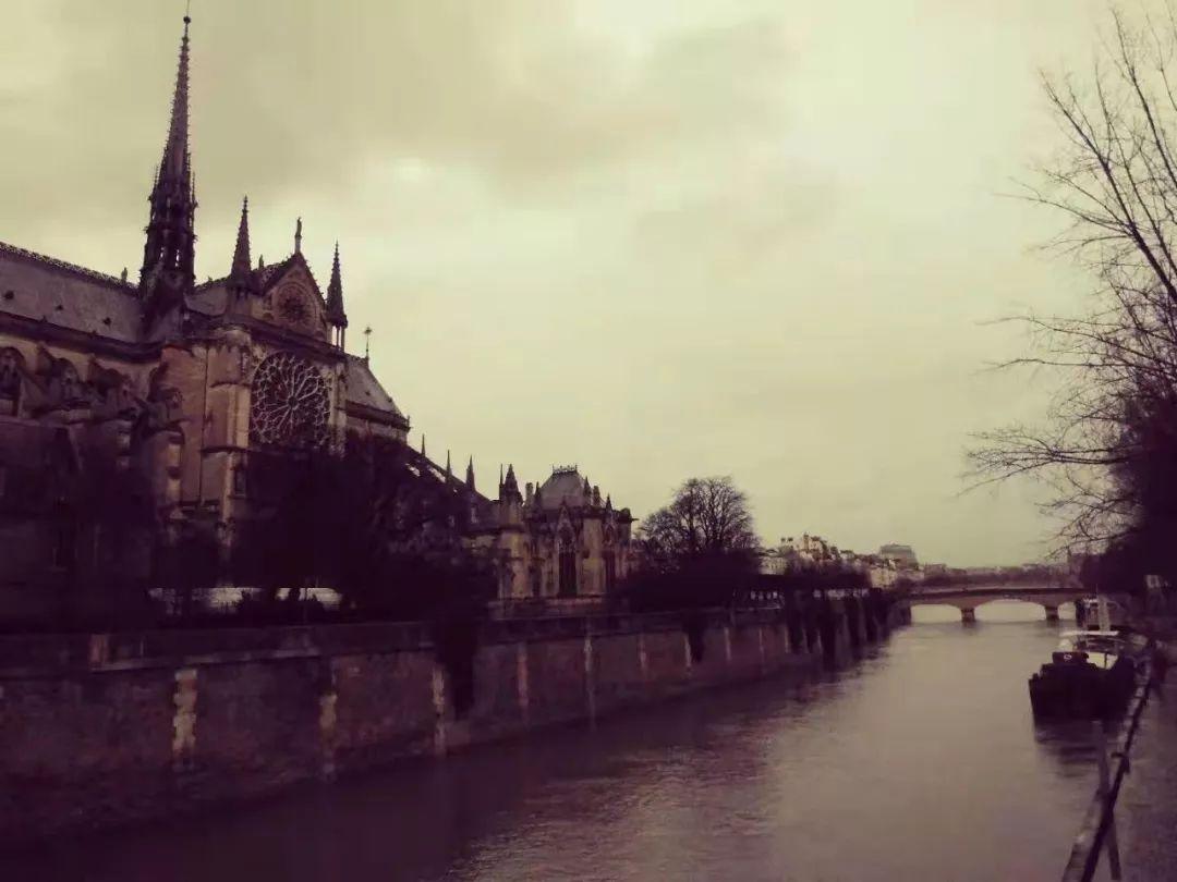 巴黎圣母院读后感800字_作文吧