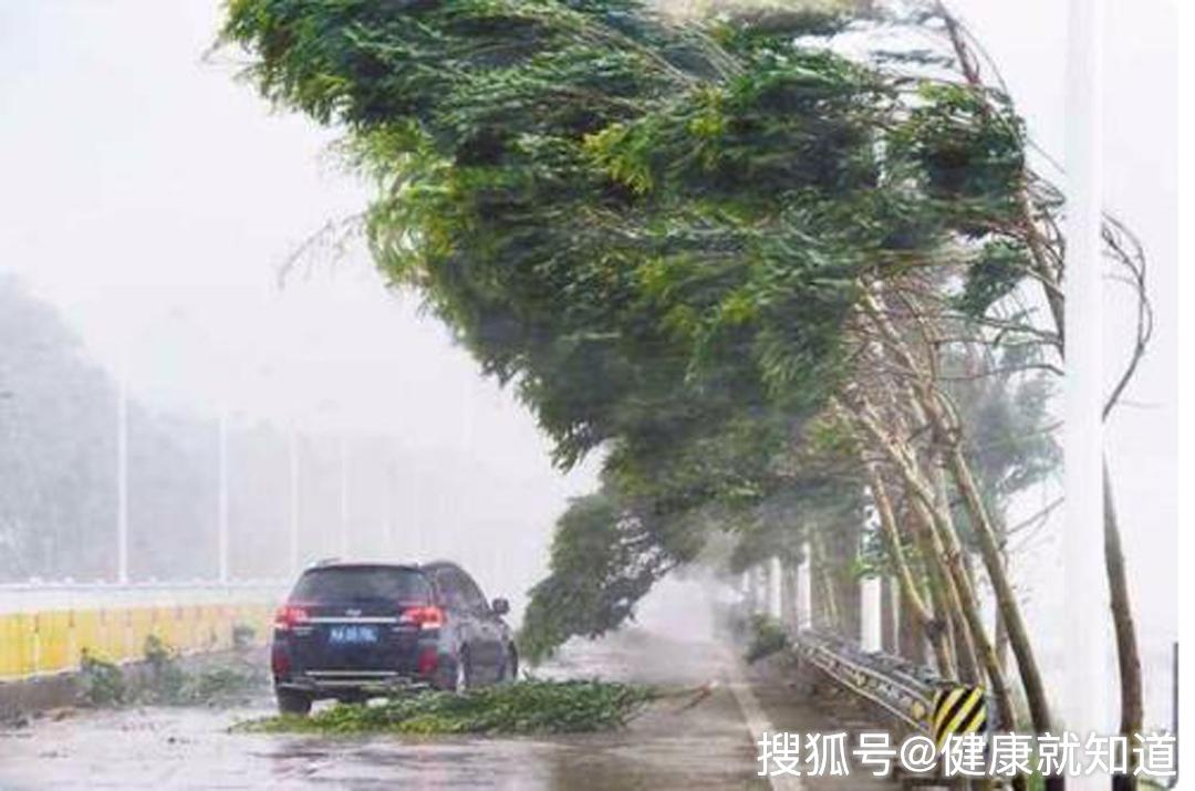 日本台风致33人死,人员伤亡惨重