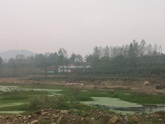 南召县公安局破获一起非法盗采河沙案嫌疑人被拘留