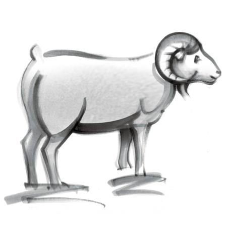 2019年白羊座满月:做好两手准备