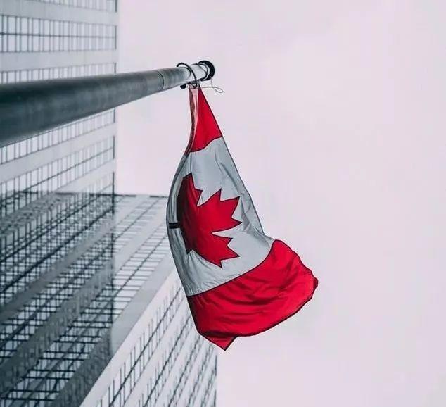 12月1日加拿大将执行税务新规!在加拿大开空壳公司避税的人危险了!