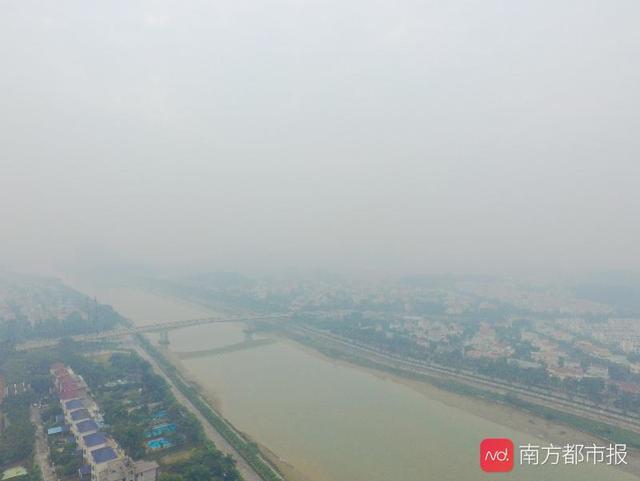 PM2.5或緻孕婦流産,高齡孕婦影響更大!專家籲改善空氣質量