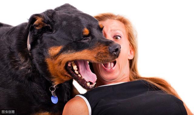 不过宠主要注意,只有狗狗频繁呕吐才可能是感染了寄生虫,并不是说只要狗狗一呕吐就是肚子有虫.